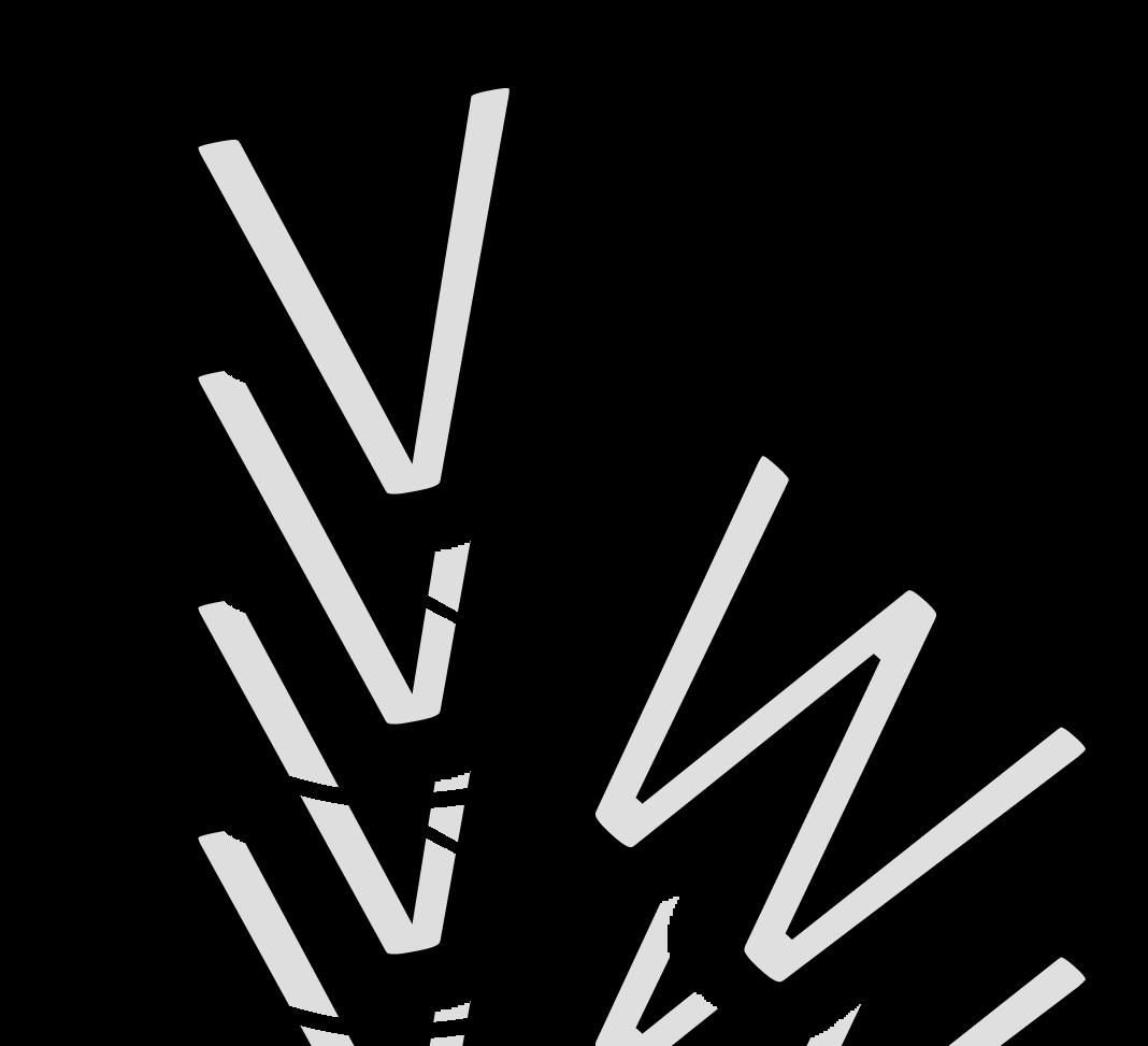 vw_absturz